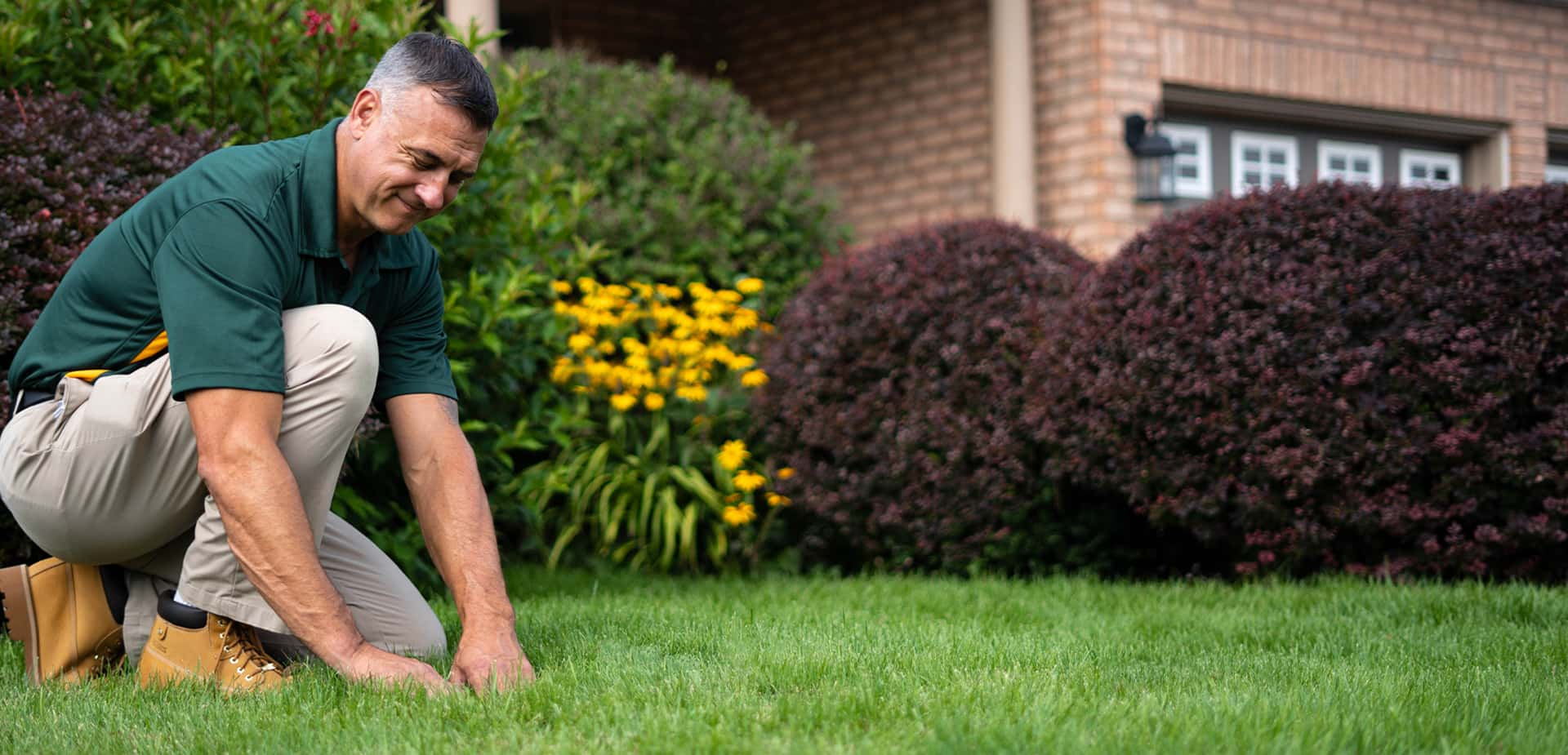 Lawn Fertilizer Winnipeg